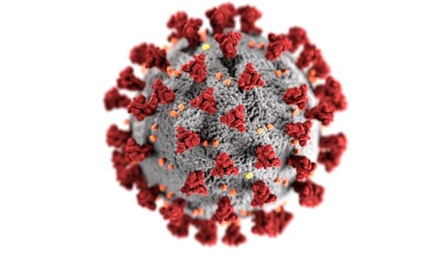 BCP Strata & Coronavirus (COVID-19)